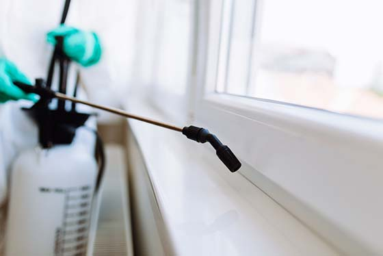 Pest Control Services Forest Hill MD