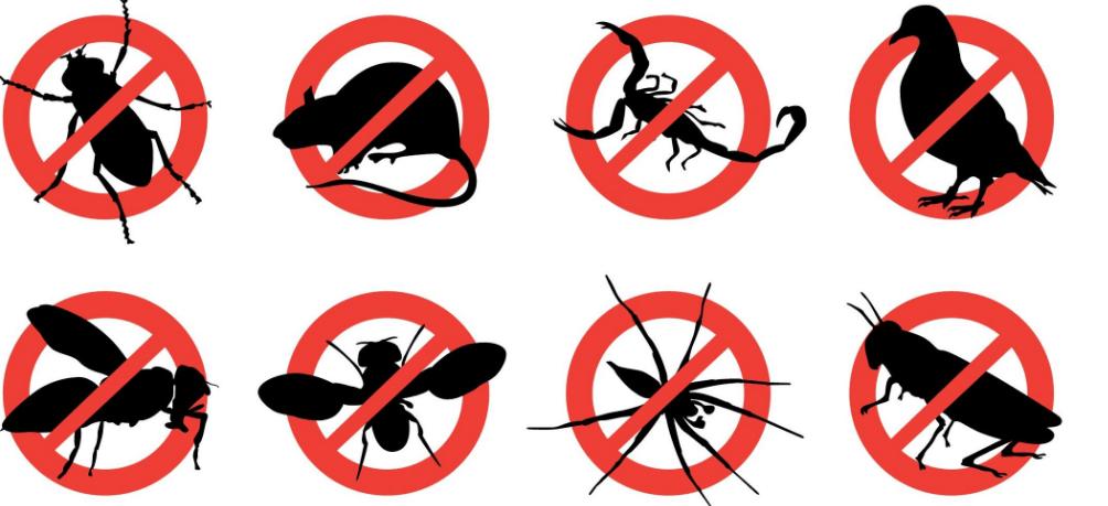 Pest Control Fork MD
