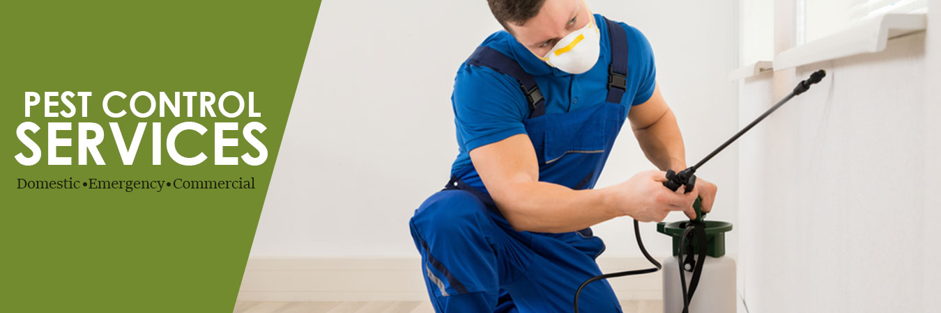 Pest Control Services in Kents Hill ME