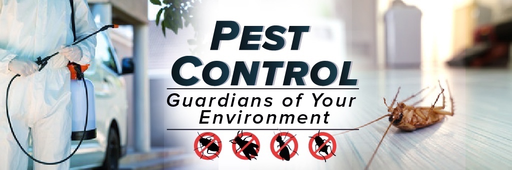 Pest Control in Hollywood MD